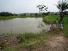 Pond-at-KJCH